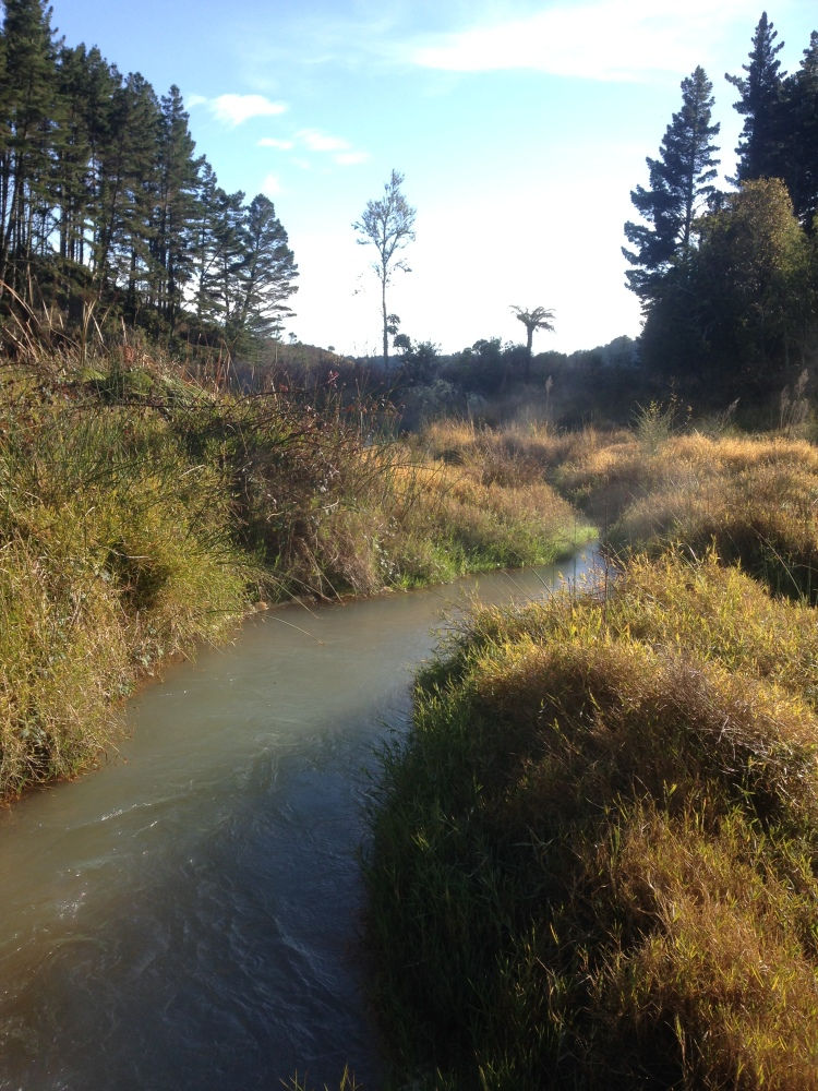 There's something in the water: alum dosing plants on lake tributaries, Rotorua, NZ (4/5)